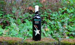 the making of the allovus winebottle